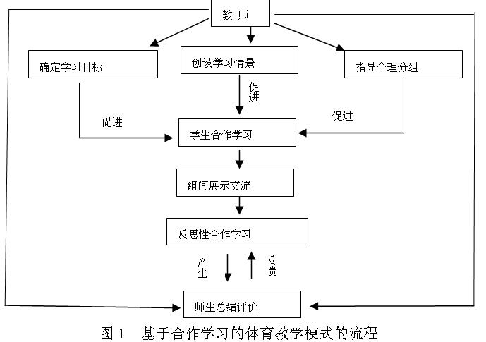 高中体育知识结构图